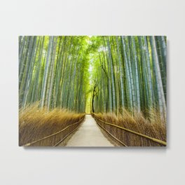 Bamboo Forest Japan Metal Print