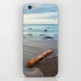 the drift wood iPhone Skin