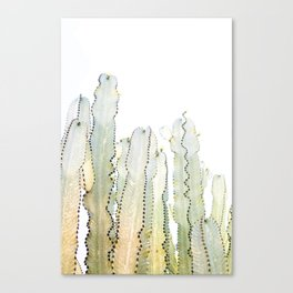 succulent dots 03 Canvas Print