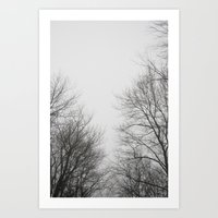 gray Art Prints featuring Gray by Diana Mutino