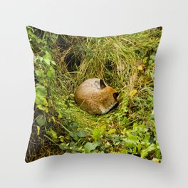 Mr Fox's afternoon nap Throw Pillow