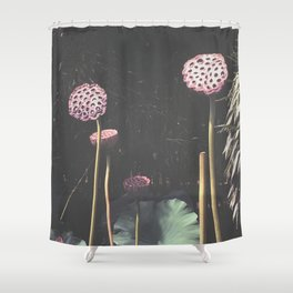 Lotus Seed Heads Shower Curtain