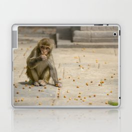 Temple ok monkeys. Nepal. Kathmandu. Laptop & iPad Skin