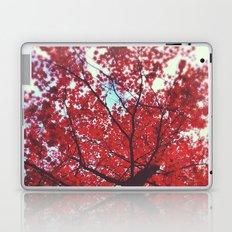 Autumn Red 2 Laptop & iPad Skin