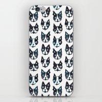 boston terrier iPhone & iPod Skins featuring BOSTON TERRIER by Barbarian // Barbra Ignatiev