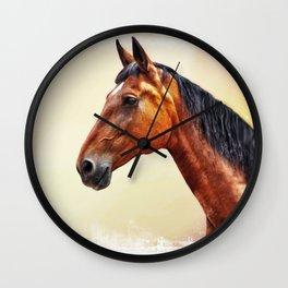 ZZ  Wall Clock