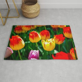 Colorful Tulips In Spring Rug