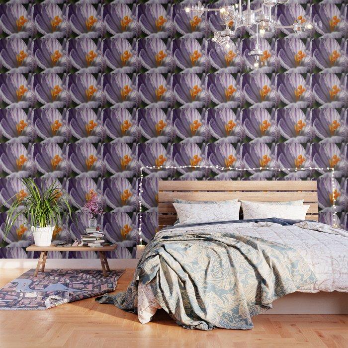 Crocuses Wallpaper