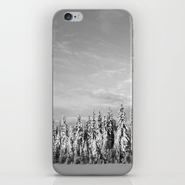 Spruce After Snow Storm iPhone Skin