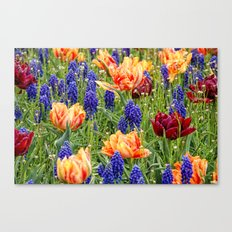 spring messengers Canvas Print