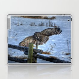 Great Grey Arriving Laptop & iPad Skin