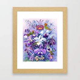 Orchids & Hummingbirds Framed Art Print