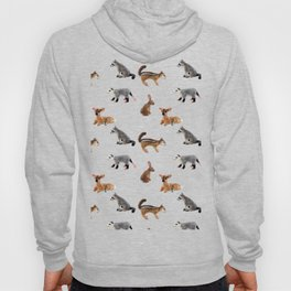 Backyard Critters in Green Hoody