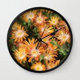 """Orange Delosperma, """"Ice Plant"""" Wall Clock"""