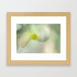 Mistery flower Framed Art Print