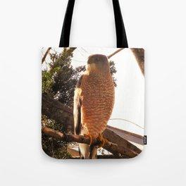 Al the Cooper's Hawk Tote Bag