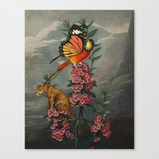 Leopardus radii Canvas Print
