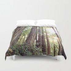 Sunlight Through Redwoods Duvet Cover