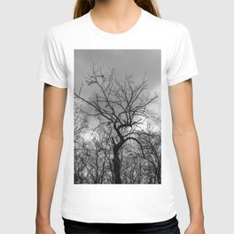 Witchy black and white tree T-shirt