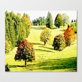 Colorfull Trees in autumn Canvas Print