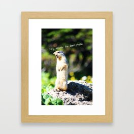 Angry Squirrel Framed Art Print