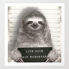 Sloth in a Mugshot Art Print