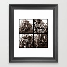 Four Flowers Framed Art Print