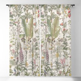 Adolphe Millot - Plantes Medicinales B - French vintage poster Sheer Curtain