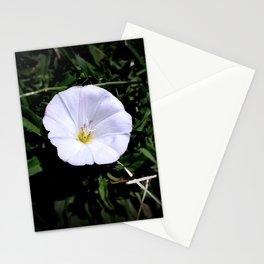 Creeping Bindweed Stationery Cards