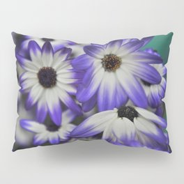 Blue & White Daisy Flowers #1 #floral #decor #art #society6 Pillow Sham