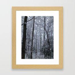 Wooded Winter Wonderland Framed Art Print