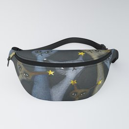 Biloxi All Stars Whimsical Cats Fanny Pack