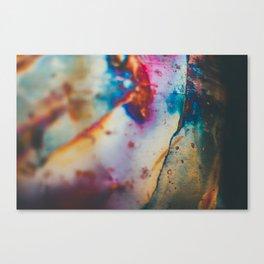Copper Patina I Canvas Print