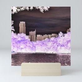 Barton Springs Negative Mini Art Print