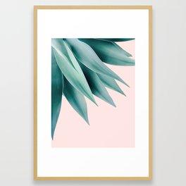 Agave flare Framed Art Print