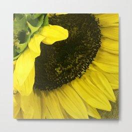 Bright Yellow Sunflower Macro Close-Up Art Photo Metal Print