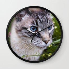 kitty in secret garden Wall Clock