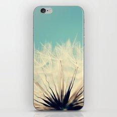 She's a Firecracker iPhone & iPod Skin