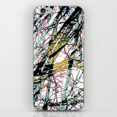 CRACKED CHINA iPhone & iPod Skin
