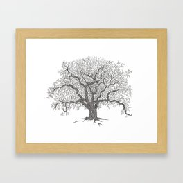 Tree 1 Framed Art Print