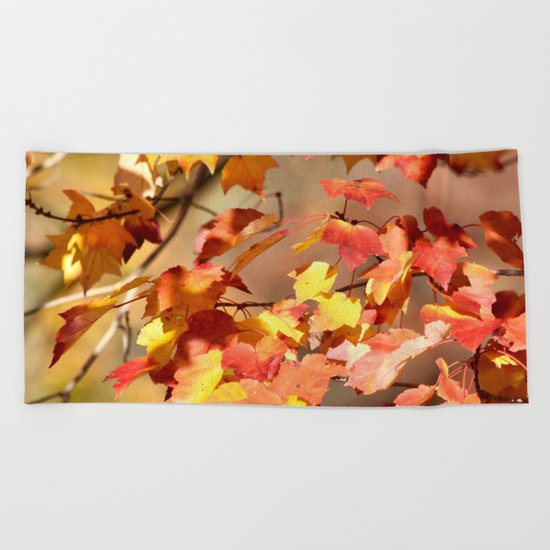 Fall Day Beach Towel