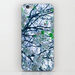 Cherry Blossom (Blue) iPhone Skin