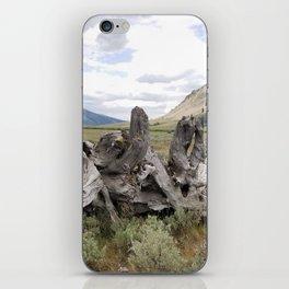 Wilderness Wood Sculpture iPhone Skin