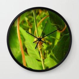 Curly Vine Wall Clock