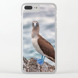 Galapagos blue footed booby bird photography Clear iPhone Case