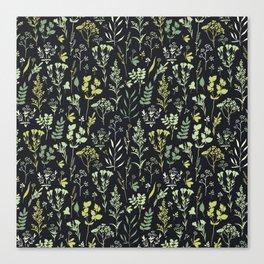 Green herbs Canvas Print