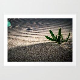 Green in the Desert Art Print
