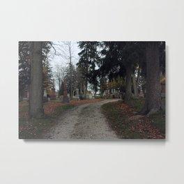 Old Cemetery Metal Print
