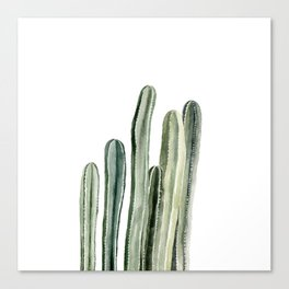 Tall Cacti Watercolor Painting Canvas Print
