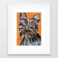yorkie Framed Art Prints featuring Yorkie by GiGi Garcia Collages